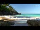 Видео в HD для занятия йогой, красивое релакс видео и музыка со звуками природы - ma...