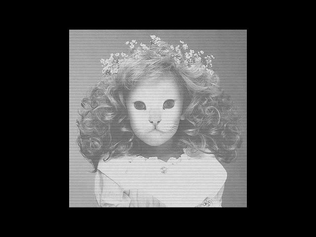 Mr.Kitty - Destroy Me (Album Version)
