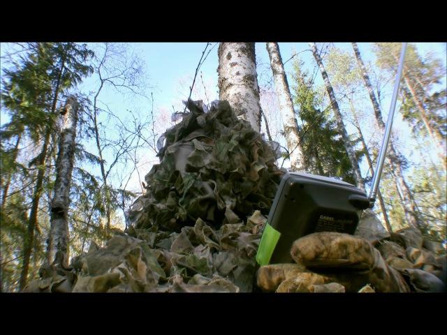 Дикая природа Скандинавии. 7. Приключения / The Adventure.1080p