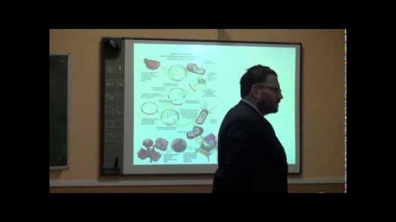 В. С. Фридман. Трансгенные организмы: угрозы и возможности.