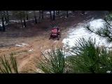 Трактора в Подокалиновском лесу