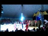 цирк шапито дива