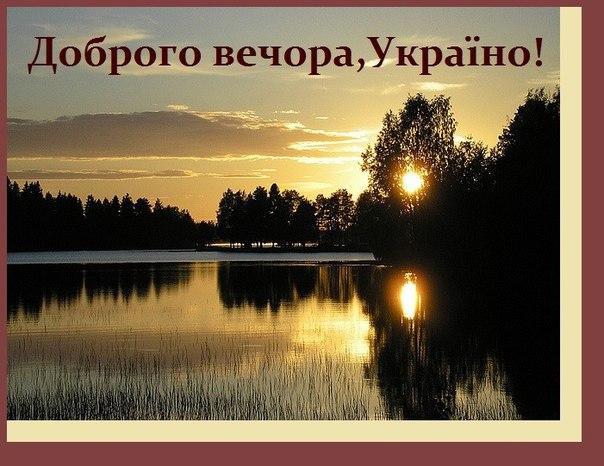 Украина сможет сэкономить до 50 млрд грн госсредств в 2017 году от закупок в системе ProZorro, - Кубив - Цензор.НЕТ 1351