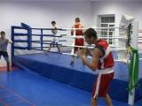 Два первых и одно второе место. Чепецкие боксеры вернулись с всероссийского турнира.