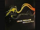 Adam Freeland - sliverlake pills (gui Boratto remix)