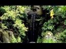 Великая Тайна Воды Aqua EP SATRip