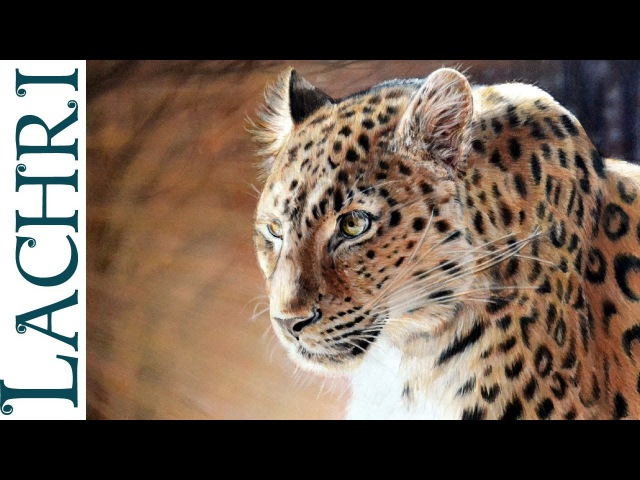 Speed drawing leopard in colored pencil - tutorial by Lachri