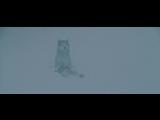 Белый плен (Eight Below) Потрясающий фильм про собак  Хаски