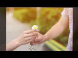 Love-Story Руслан и Алина