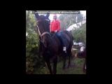 «лошадь» под музыку Детский хор