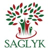 www.saglyk.info