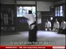 Айкидо Ивама Морихиро Сайто дзё дори, дзё наге