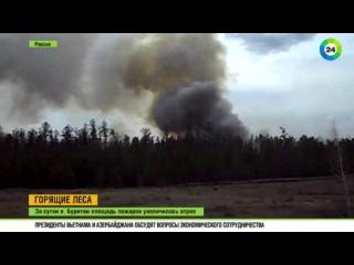 Очистка территорий: В Бурятии площадь пожаров за сутки увеличилась втрое
