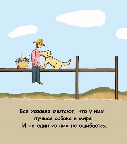аватарка зайка: