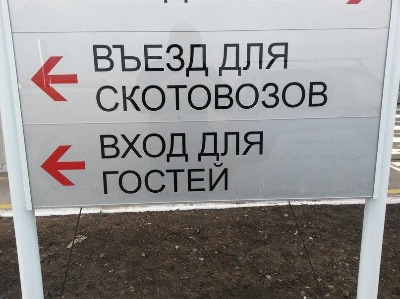Павел Колесников | Москва