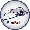 SeoBulls - Продвижение сайта в ТОП поисковиков!
