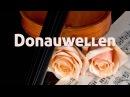 J Ivanovici Donauwellen Walzer Arrangment V L Artok