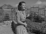 Желание (1943) Desiderio