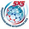 Национальная Мини-Футбольная Лига