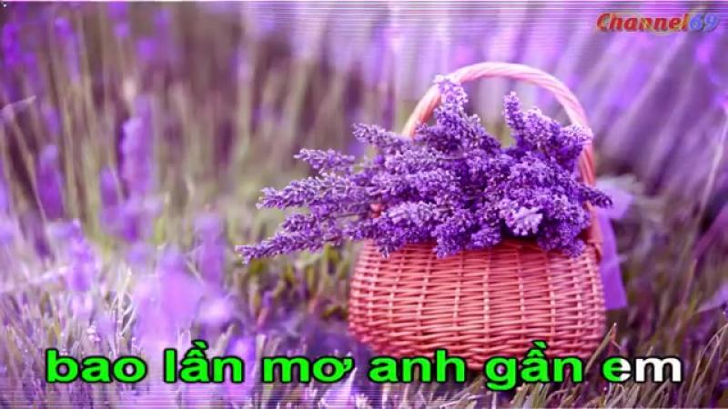 My Heart Will Go On - Karaoke - Beat - Celine Dion -