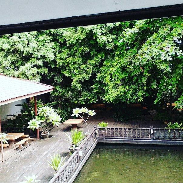 В Лаосе заселили в неплохой отель, насколько я понял он не для русских. Вид с окна на озеро с карпами. ...