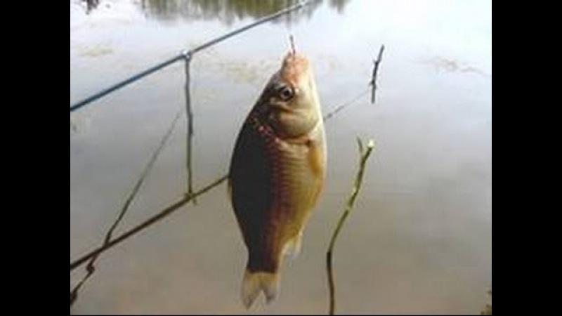 Рыбалка на наримановских каналах, ловим весеннего карасика
