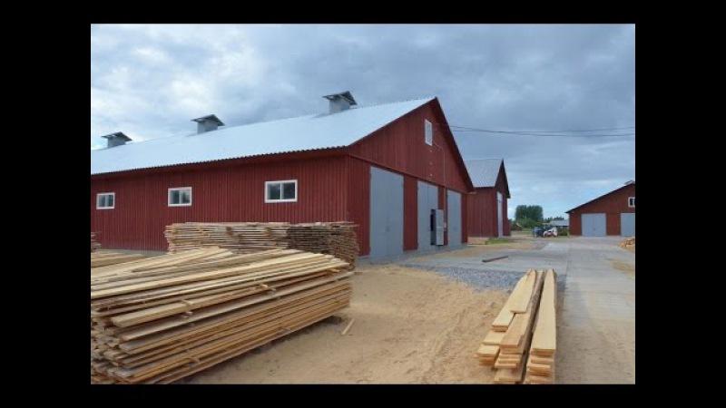 Технология строительства ферм в фермерском хозяйстве Катумы