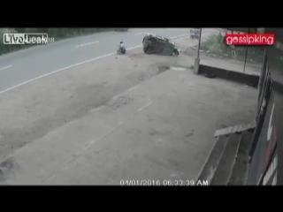 Собака спровоцировала ДТП в Индии (04.01.2016)