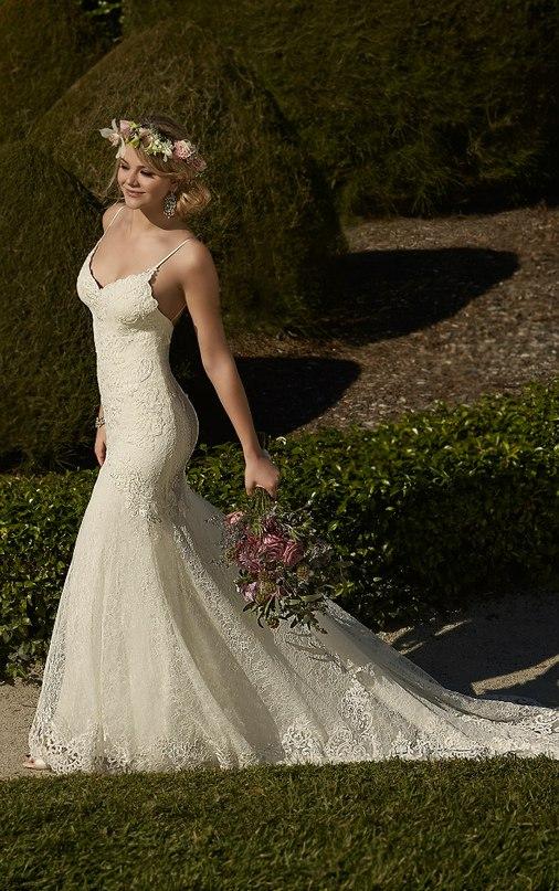 Свадебное платье: коллекция Essense. Свадебные платья Essense. Опытный ведущий на свадьбу в Волгограде. Павел Июльский: +7(937)-727-25-75 и +7(937)-555-20-20
