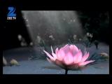 Radha Krishna - Ek Aalokik Prem Gaatha (promo)