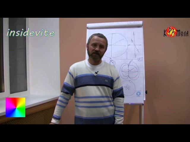 Сергей ДАНИЛОВ Закрытая информация Платон Лукашевич