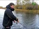 Алексей Шанин Твичинг на мелководье