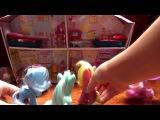 Мисс Эквестрии С Дейзи Дримс 1 серия Дружба это чудо Мой маленький пони сериал на русском