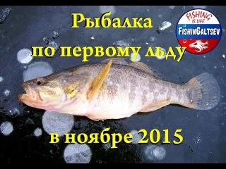 Рыбалка по первому льду в ноябре 2015 FishinGaltsev