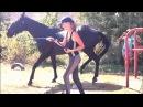 I'm sorry I'm a f*ck up :D (horse bloopers and fails)