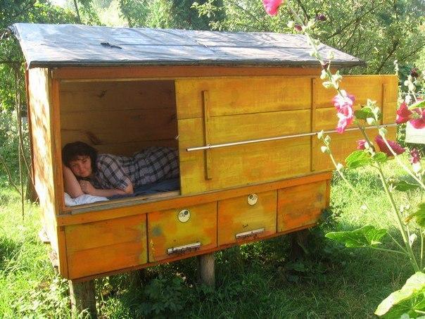 Исцеляющий сон на пчелах