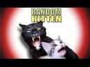 Talking Kitty Cat 43 Random Kitten