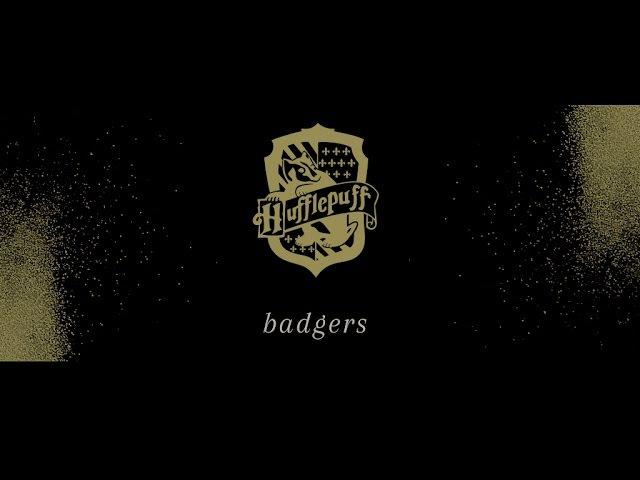 Badgers hufflepuff house