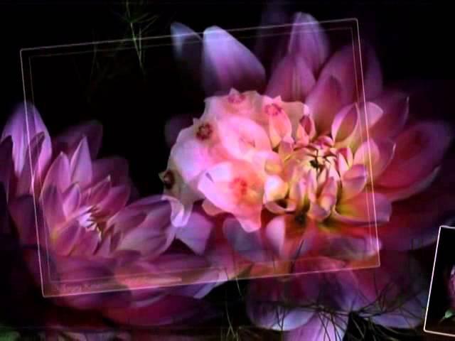 Fausto Papetti Маленький цветок-Чарующие звуки саксофона...