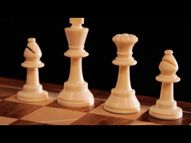 Extreme Amazing Super-Chess! (Chess.)