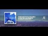 DJ Feel feat Jan Johnston - Illuminate (Radio Edit) Pure Bliss Vocals Volume 5