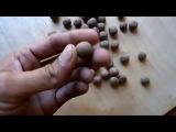 Бойлы изготовление бойлов в домашних условиях, для карпа сазана