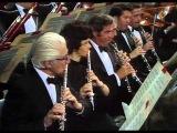 Tchaikovsky - Symphony №5 (Bernstein)