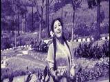 indiya_toz_icinde_cicek_Цветок  в Пыли-Индия