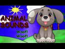 Animal Sounds Animal Sounds Songs for Kids Kids Songs by The Learning Station
