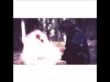 Сверхъестественное (Supernatural-Vine-1,2,3,4,5,6,7,8,9,10,11.season)клип