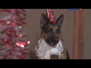 Лорд. Пёс-полицейский: сезон 1, серия 21
