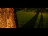 One Week with SLR Magic anamorphot (OM-D & Sony A7)