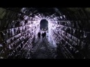 Мертвая зона/The Dead Zone (1983) Стивен Кинг/by Stephen King
