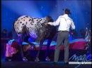 Tony Hocheger Le cheval LE PLUS GRAND CABARET DU MONDE
